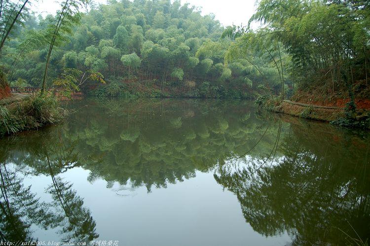 西面与贵州省赤水国家级风景名胜区月亮湖景区相连,景区以竹海闻名,山