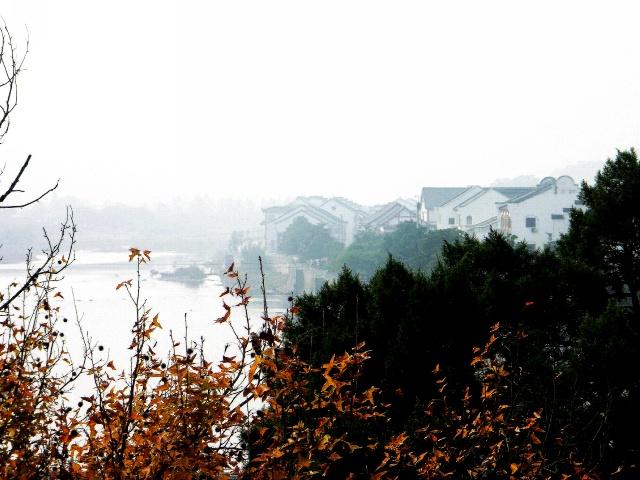 秋天的风景(均摄于九月,十月):     南京: 上图为紫金山