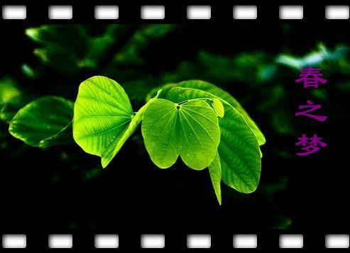 绿色家我的梦儿童画