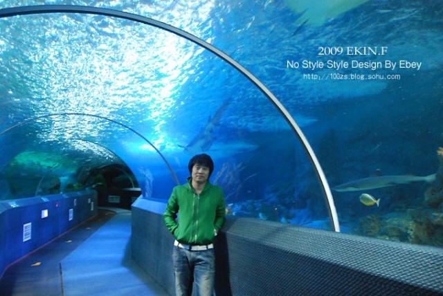 逛海底世界,我喜欢鲨鱼的目标定位!0/?