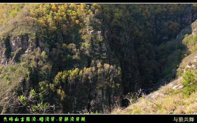 原始森林--九峰山自然保护区-牵手走过爱-我的搜狐