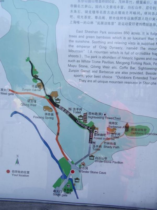 2011-04-12 | 佘山国家森林公园踏青记