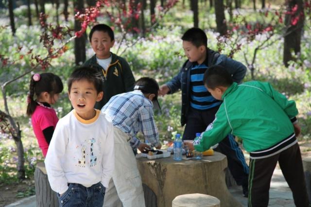 幼儿园春游—野生动物园